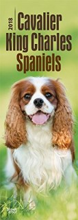 Cavalier King Charles Spaniels 2018 6.75 x 16.5 Inch Monthly Slimline Wall Calendar, Dog Canine