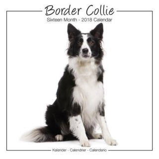 Border Collie Calendar - Dog Breed Calendars 2018 - Dog Calendar - Calendars 2017 - 2018 wall calendars - 16 Month Wall Calendar by Avonside Studio