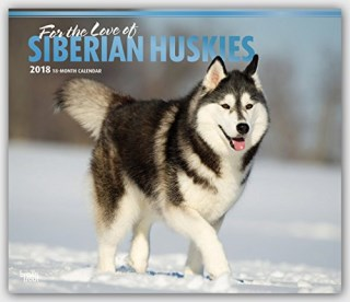 For the Love of Siberian Huskies 2018 14 x 12 Inch Monthly Deluxe Wall Calendar with Foil Stamped Cover, Animal Dog Breeds Husky