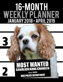 "2018-2019 Weekly Planner - Most Wanted Cavalier King Charles Spaniel: Daily Diary Monthly Yearly Calendar Large 8.5"" x 11"" Schedule Journal Organizer (Dog Planners 2018-2019) (Volume 26)"