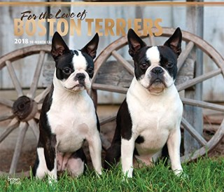 For the Love of Boston Terriers 2018 14 x 12 Inch Monthly Deluxe Wall Calendar with Foil Stamped Cover, Animal Dog Breeds Terriers (Multilingual Edition)