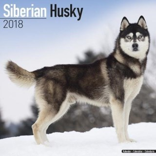 Siberian Husky Calendar - Dog Breed Calendars - 2017 - 2018 wall Calendars - 16 Month by Avonside