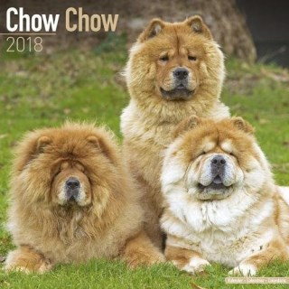Chow Chow Calendar - Dog Breed Calendars - 2017 - 2018 wall Calendars - 16 Month by Avonside