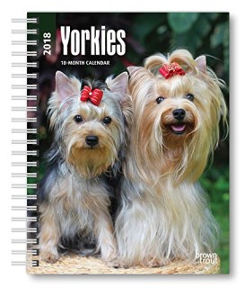 Yorkshire Terriers 2018 6 x 7.75 Inch Weekly Engagement Calendar, Animals Small Dog Breeds Terrier Puppies