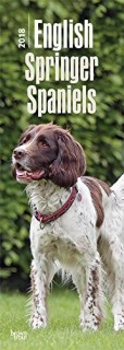English Springer Spaniels 2018 6.75 x 16.5 Inch Monthly Slimline Wall Calendar, Dog Canine