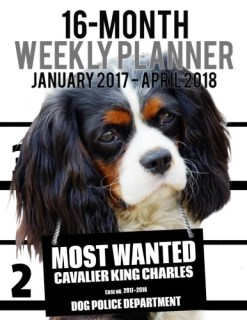 Most Wanted Cavalier King Charles 2017-2018 Weekly Planner - 16 Month: Large (11 X 8.5-Inches) Daily Diary Monthly Yearly Calendar (Dog Planners) (Volume 26)