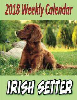 2018 Weekly Calendar Irish Setter