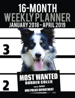 "2018-2019 Weekly Planner - Most Wanted Border Collie: Daily Diary Monthly Yearly Calendar Large 8.5"" x 11"" Schedule Journal Organizer (Dog Planners 2018-2019) (Volume 44)"