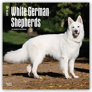 White German Shepherds 2018 12 x 12 Inch Monthly Square Wall Calendar, Animals Dog Breeds (Multilingual Edition)