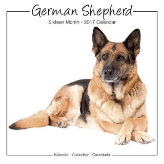 German Shepherd Calendar - Calendar German Shepherd - Dog Breed Calendars 2017 - Dog Calendar - Calendars 2016 - 2017 wall calendars - 16 Month Wall Calendar by Avonside Studio