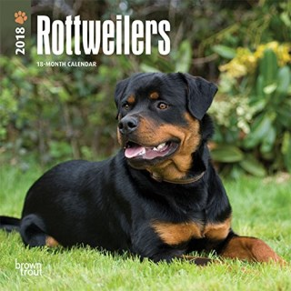 Rottweilers 2018 7 x 7 Inch Monthly Mini Wall Calendar, Animals Dog Breeds (Multilingual Edition)