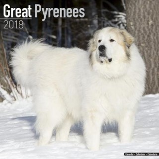 Great Pyrenees Calendar - Dog Breed Calendars - 2017 - 2018 wall Calendars - 16 Month by Avonside