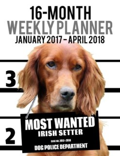 2017-2018 Weekly Planner - Most Wanted Irish Setter: Daily Diary Monthly Yearly Calendar (Dog Planners) (Volume 70)