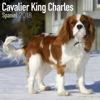 Cavalier King Charles Calendar - Dog Breed Calendars - 2017 - 2018 wall Calendars - 16 Month by Avonside