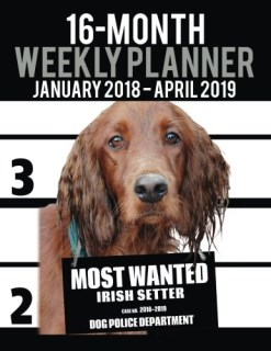 "2018-2019 Weekly Planner - Most Wanted Irish Setter: Daily Diary Monthly Yearly Calendar Large 8.5"" x 11"" Schedule Journal Organizer (Dog Planners 2018-2019) (Volume 70)"