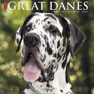 Great Dane Calendar