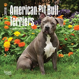 American Pit Bull Terriers 2018 7 x 7 Inch Monthly Mini Wall Calendar, Animals Dog Breeds (Multilingual Edition)