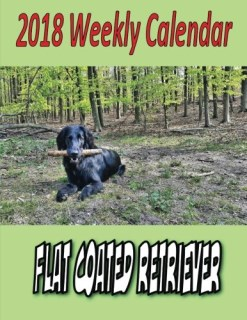 2018 Weekly Calendar Flat Coated Retriever