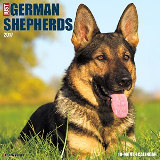 Just German Shepherds 2017 Wall Calendar (Dog Breed Calendars)