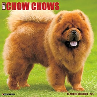 Just Chow Chows 2017 Wall Calendar (Dog Breed Calendars)