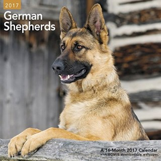 German Shepherds Wall Calendar (2017)