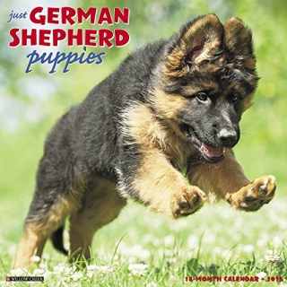German Shepherd Dog Calendar
