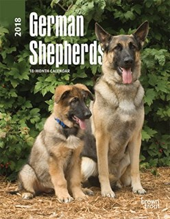 German Shepherds 2018 6 x 7.75 Inch Weekly Engagement Calendar, Animals Dog Breeds