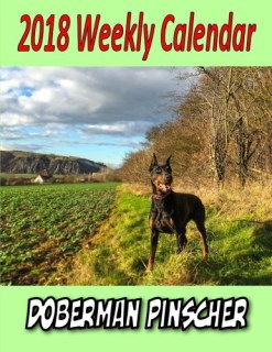 2018 Weekly Calendar Doberman Pinscher