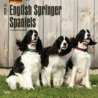 English Springer Spaniels 2018 12 x 12 Inch Monthly Square Wall Calendar, Animals Dog Breeds (Multilingual Edition)