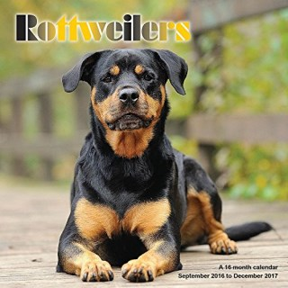 Rottweiler Calendar - 2017 Wall Calendars - Calendar 2016 - Dog Breed Calendars - Monthly Wall Calendar by Magnum