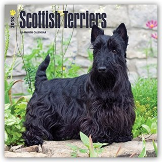Scottish Terriers 2018 12 x 12 Inch Monthly Square Wall Calendar, Animals Dog Breeds (Multilingual Edition)