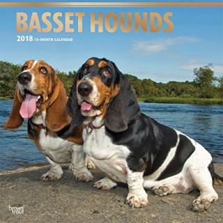 Basset Hounds 2018 12 x 12 Inch Monthly Square Wall Calendar with Foil Stamped Cover, Animals Dog Breeds Hound (Multilingual Edition)