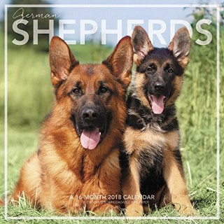 2018 German Shepherds Wall Calendar (Landmark)