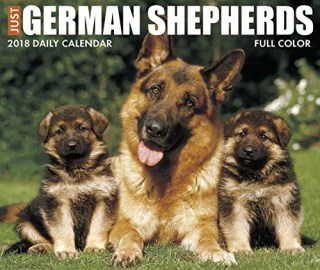 Just German Shepherds 2018 Box Calendar (Dog Breed Calendar)