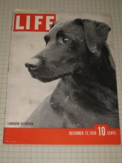 Life Magazine December 12, 1938 Labrador Retriever - Robert Capa - Pygmalion - Victorian Christmas Cards - Fall of Hankow, China - Coca Cola Santa