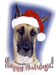 Pet Star Christmas Cards - Great Dane