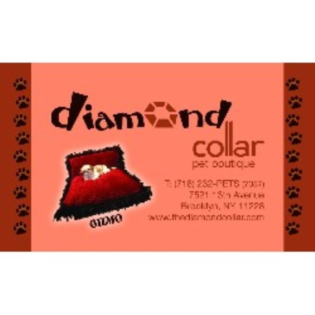 The Diamond Collar Dog Boutique Brooklyn