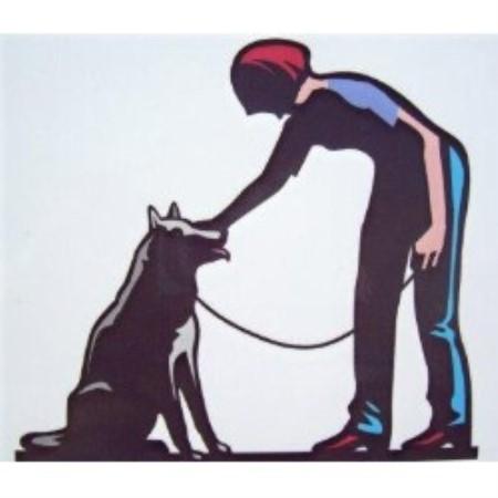 Good Dog Training St Augustine