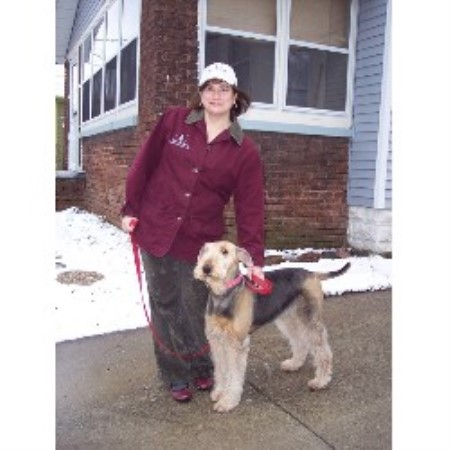Don Gentile Dog Training
