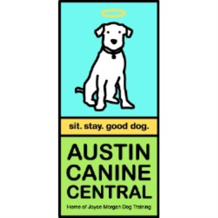 Affordable Dog Grooming Austin