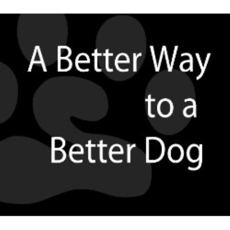 Bark Busters Edmonton In-Home Dog Training