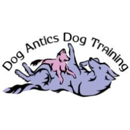 Dog Antics Dog Training