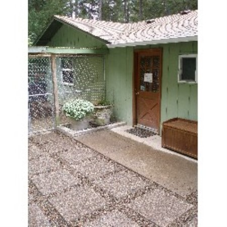 Best Dog Groomer In Eugene Oregon