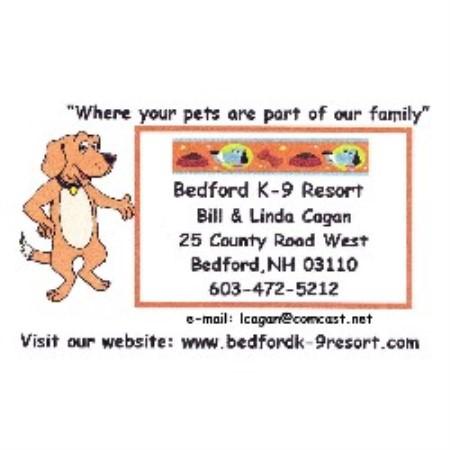 Dog Boarding Bedford Nh