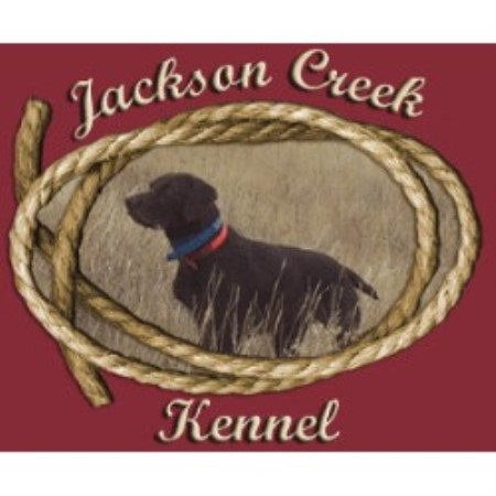 Jackson Creek Kennel Peyton