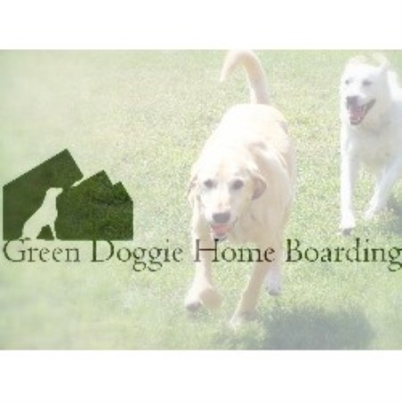 Green Doggie Home Boarding Granada Hills
