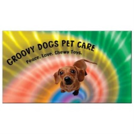 Groovy Dogs Pet Care Tallahassee