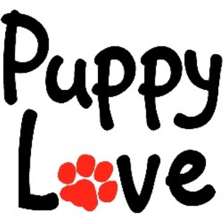 Puppy Love Dog Boutique Beaumont, Texas Picture 1