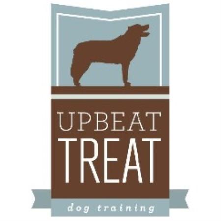 Best Dog Training Classes Madison Wi