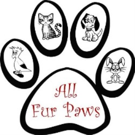All Fur Paws Plainfield